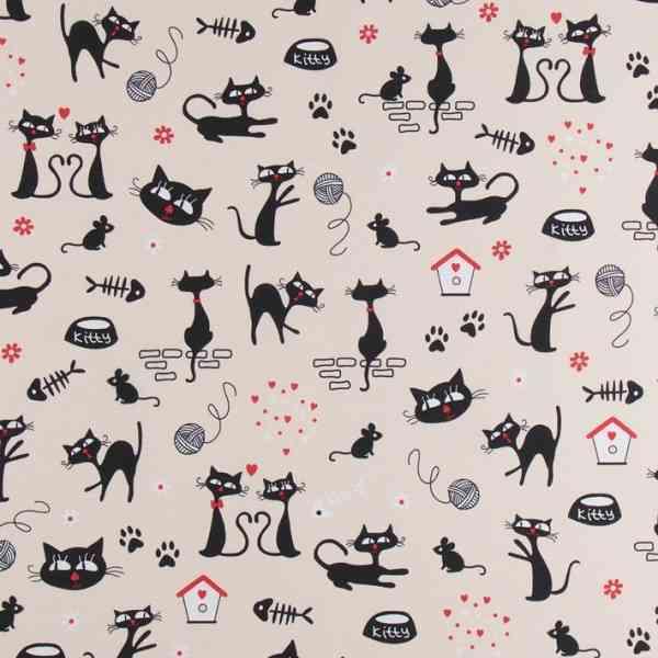 Canvas con Gattini Crazy Cats