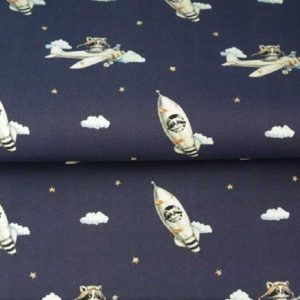Cotone Space Ship Navy