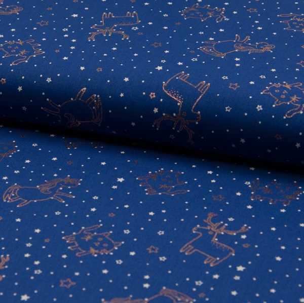 Cotone In the Stars