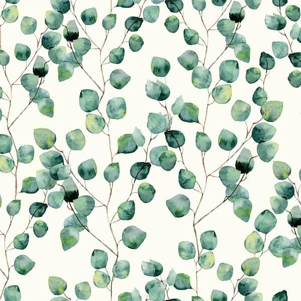 Cotone Canvas con Foglie di Eucalipto