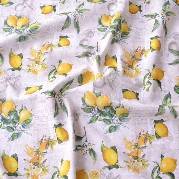Cotone con Limoni Citronier